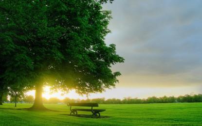 زندگی بهتر از منظر امام رضا علیه السلام